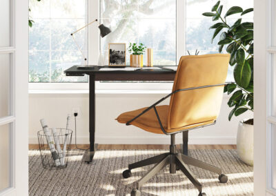 stance-lift-standing-desk-collection-product-type-image-1200-675